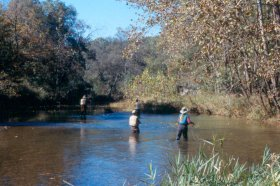 On-stream fly fishing school:  Fishing Terrestrials